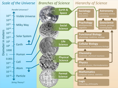 The scale of the universe mapped to the branches of science and the hierarchy of science / Efbrazil. CC BY-SA 3.0 (c) CC BY-SA 3.0. The scale of the universe mapped to the branches of science and the hierarchy of science, by Efbrazil
